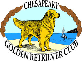 Chesapeake Golden Retriever Club